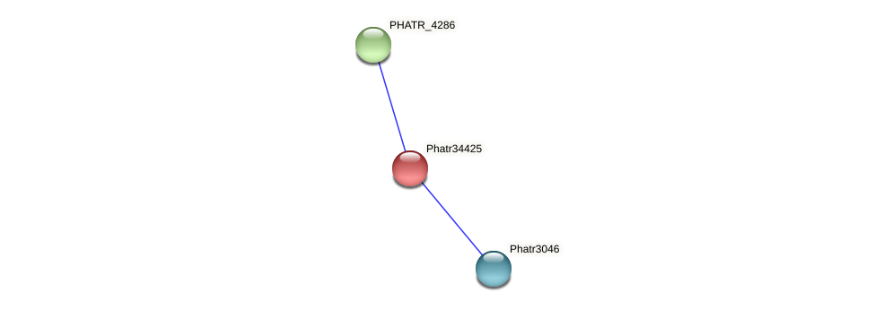 Phatr34425 protein (Phaeodactylum tricornutum) - STRING interaction network