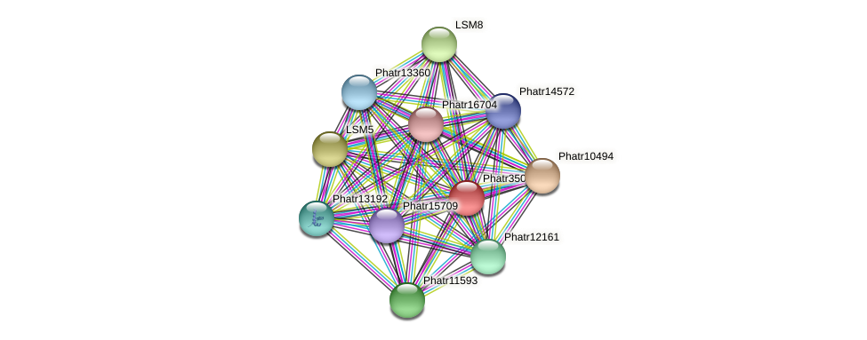 Phatr35063 protein (Phaeodactylum tricornutum) - STRING interaction network