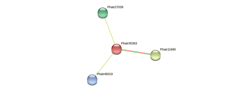 Phatr35363 protein (Phaeodactylum tricornutum) - STRING interaction network