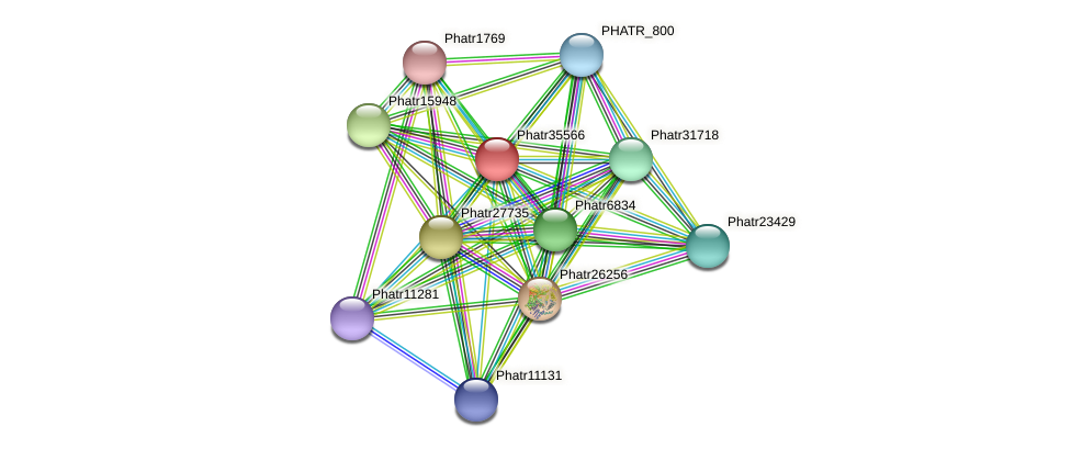 Phatr35566 protein (Phaeodactylum tricornutum) - STRING interaction network