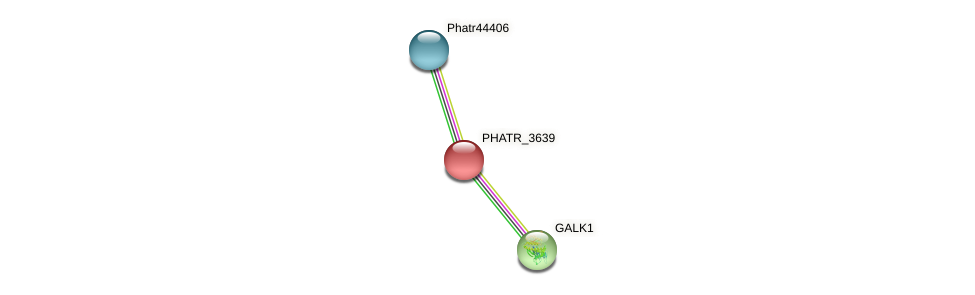 PHATR_3639 protein (Phaeodactylum tricornutum) - STRING interaction network