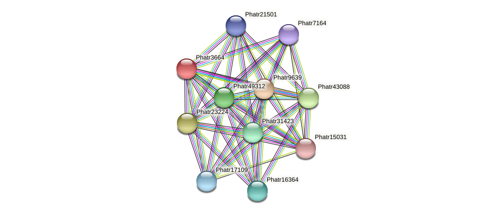Phatr3664 protein (Phaeodactylum tricornutum) - STRING interaction network