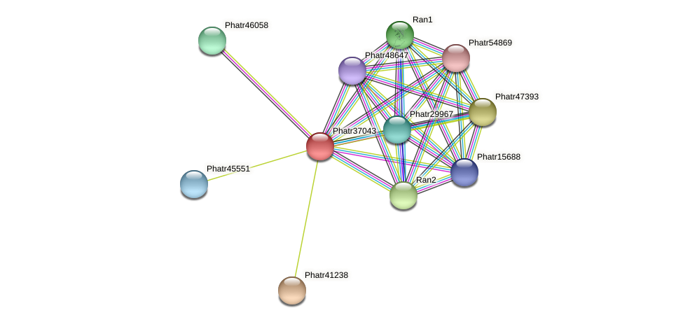 Phatr37043 protein (Phaeodactylum tricornutum) - STRING interaction network