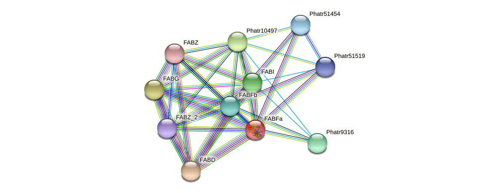 FABFa protein (Phaeodactylum tricornutum) - STRING interaction network