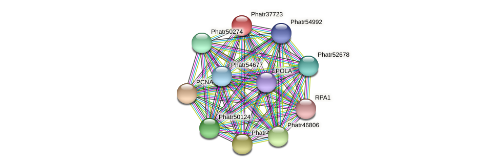 Phatr37723 protein (Phaeodactylum tricornutum) - STRING interaction network