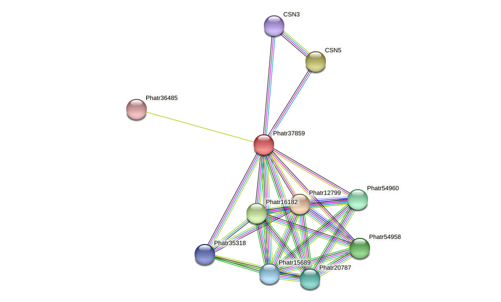 Phatr37859 protein (Phaeodactylum tricornutum) - STRING interaction network