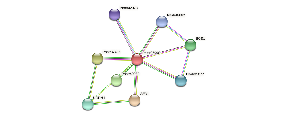 Phatr37908 protein (Phaeodactylum tricornutum) - STRING interaction network