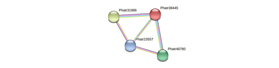 Phatr38445 protein (Phaeodactylum tricornutum) - STRING interaction network