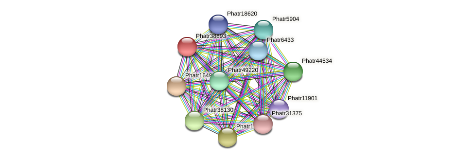 Phatr38893 protein (Phaeodactylum tricornutum) - STRING interaction network
