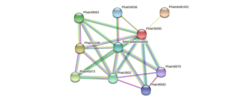 Phatr39282 protein (Phaeodactylum tricornutum) - STRING interaction network