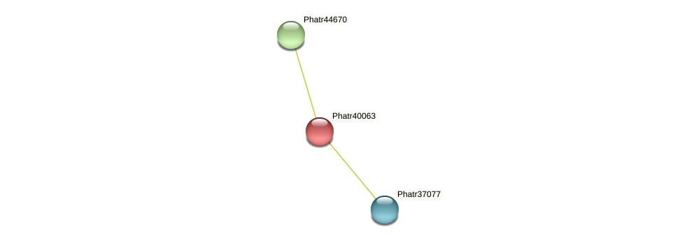 Phatr40063 protein (Phaeodactylum tricornutum) - STRING interaction network