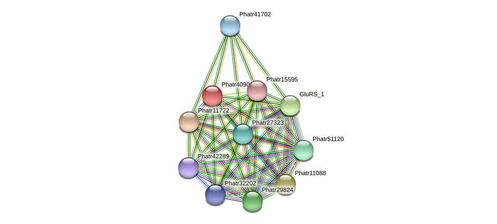 Phatr40901 protein (Phaeodactylum tricornutum) - STRING interaction network