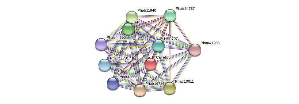 Phatr41172 protein (Phaeodactylum tricornutum) - STRING interaction network