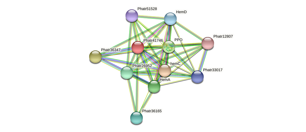 Phatr41746 protein (Phaeodactylum tricornutum) - STRING interaction network