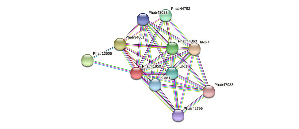 Phatr41850 protein (Phaeodactylum tricornutum) - STRING interaction network