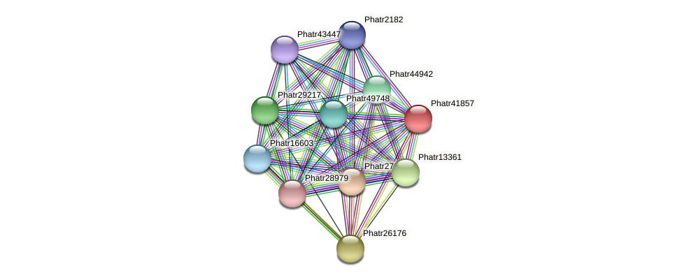 Phatr41857 protein (Phaeodactylum tricornutum) - STRING interaction network