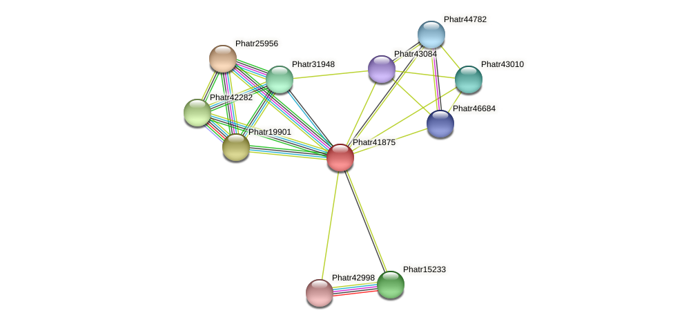 Phatr41875 protein (Phaeodactylum tricornutum) - STRING interaction network
