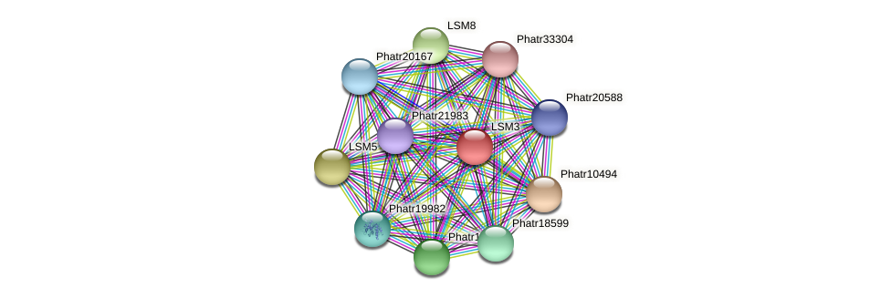 Phatr42364 protein (Phaeodactylum tricornutum) - STRING interaction network