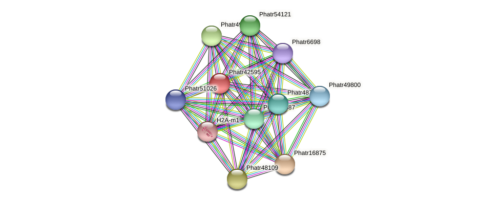 Phatr42595 protein (Phaeodactylum tricornutum) - STRING interaction network