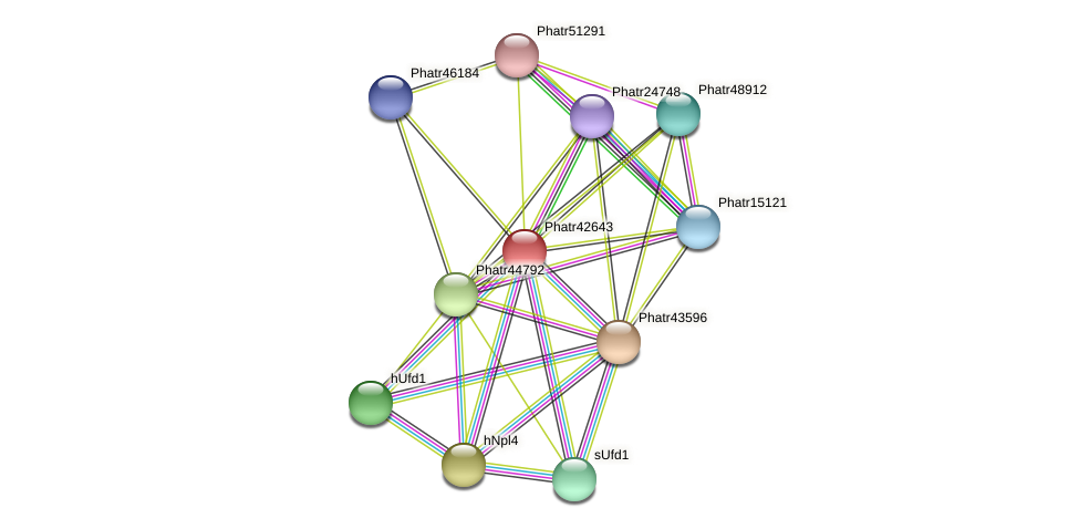 Phatr42643 protein (Phaeodactylum tricornutum) - STRING interaction network