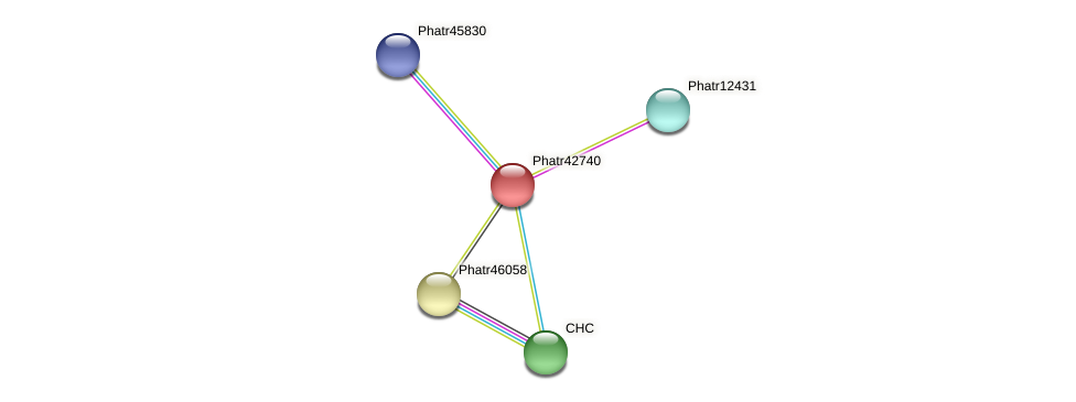 Phatr42740 protein (Phaeodactylum tricornutum) - STRING interaction network