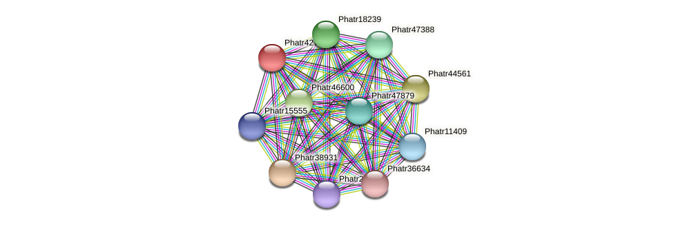 Phatr42758 protein (Phaeodactylum tricornutum) - STRING interaction network