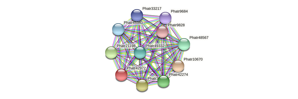 Phatr42972 protein (Phaeodactylum tricornutum) - STRING interaction network