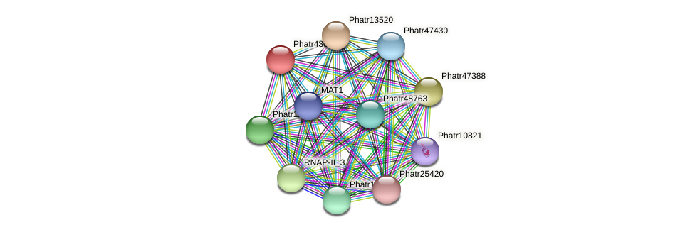 Phatr43071 protein (Phaeodactylum tricornutum) - STRING interaction network
