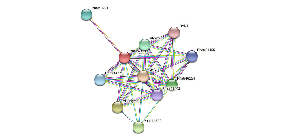 Phatr43133 protein (Phaeodactylum tricornutum) - STRING interaction network