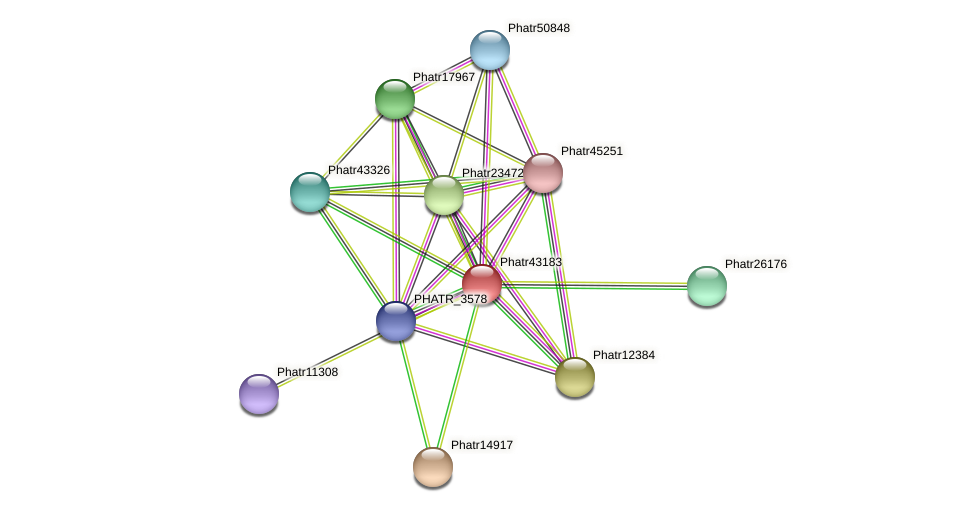 Phatr43183 protein (Phaeodactylum tricornutum) - STRING interaction network