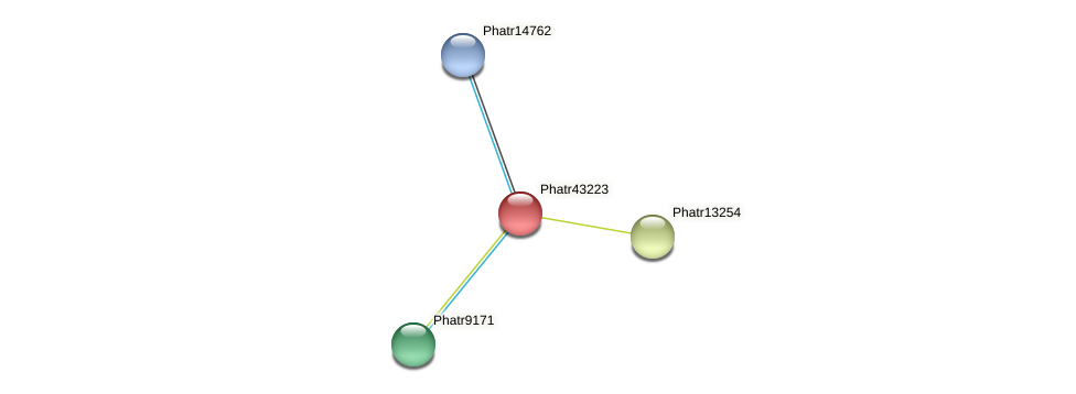 Phatr43223 protein (Phaeodactylum tricornutum) - STRING interaction network