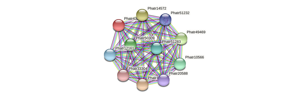 Phatr43359 protein (Phaeodactylum tricornutum) - STRING interaction network