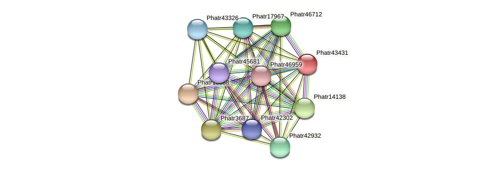 Phatr43431 protein (Phaeodactylum tricornutum) - STRING interaction network