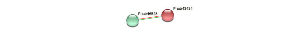 Phatr43434 protein (Phaeodactylum tricornutum) - STRING interaction network