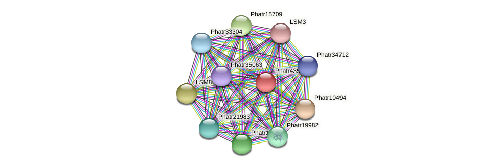 Phatr43576 protein (Phaeodactylum tricornutum) - STRING interaction network