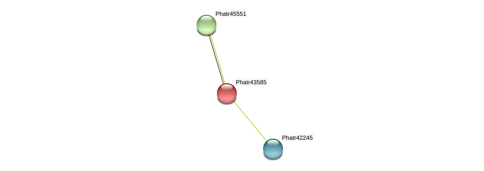 Phatr43585 protein (Phaeodactylum tricornutum) - STRING interaction network