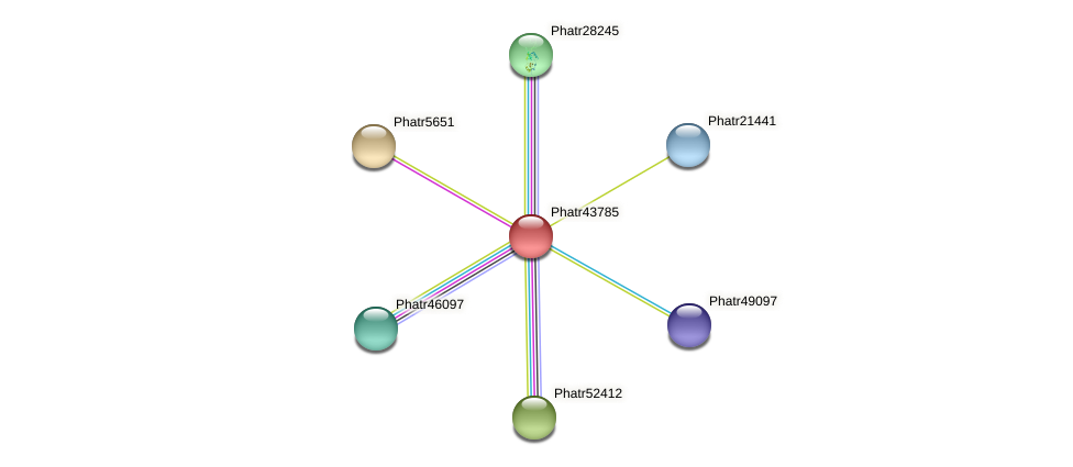 Phatr43785 protein (Phaeodactylum tricornutum) - STRING interaction network