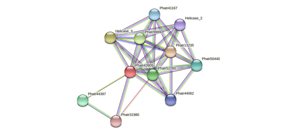 Phatr43905 protein (Phaeodactylum tricornutum) - STRING interaction network