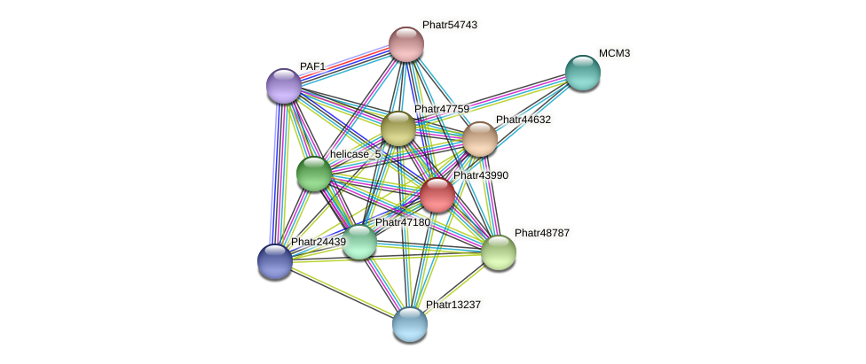 Phatr43990 protein (Phaeodactylum tricornutum) - STRING interaction network