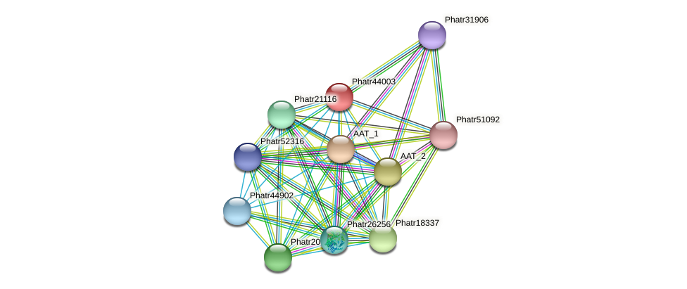 Phatr44003 protein (Phaeodactylum tricornutum) - STRING interaction network