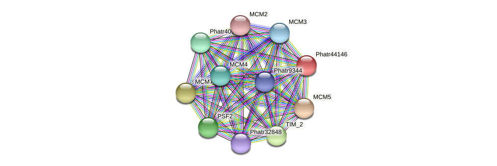 Phatr44146 protein (Phaeodactylum tricornutum) - STRING interaction network