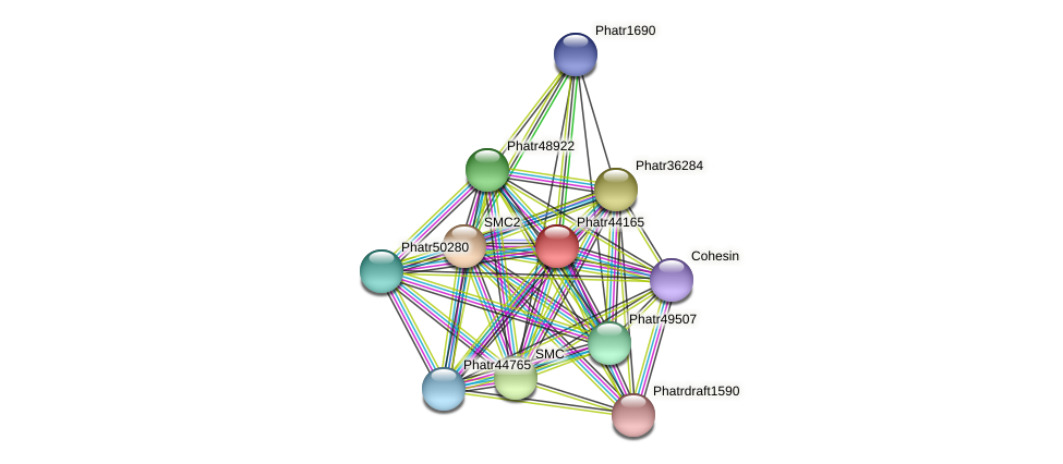 Phatr44165 protein (Phaeodactylum tricornutum) - STRING interaction network