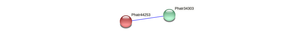 Phatr44253 protein (Phaeodactylum tricornutum) - STRING interaction network