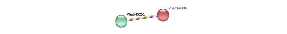Phatr44334 protein (Phaeodactylum tricornutum) - STRING interaction network