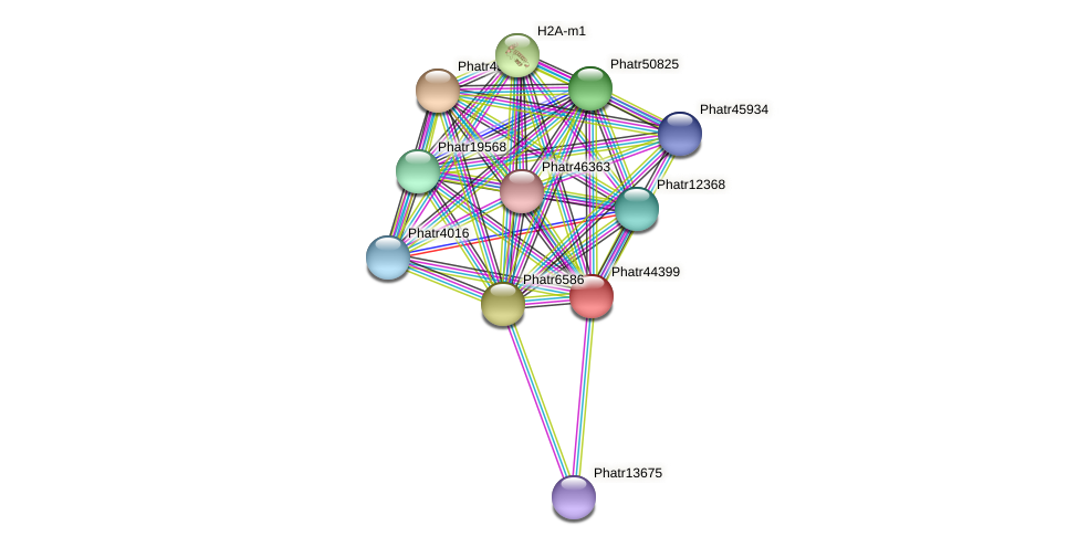 Phatr44399 protein (Phaeodactylum tricornutum) - STRING interaction network