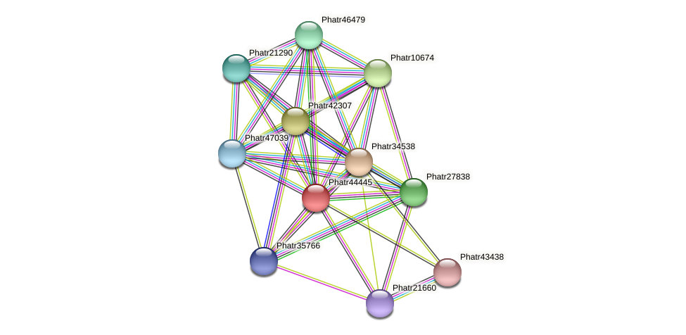 Phatr44445 protein (Phaeodactylum tricornutum) - STRING interaction network