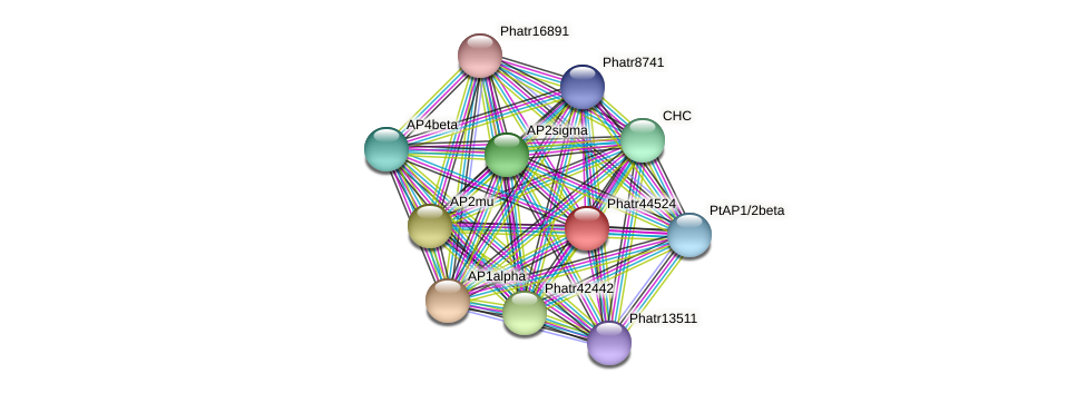 Phatr44524 protein (Phaeodactylum tricornutum) - STRING interaction network