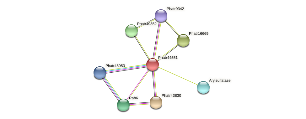 Phatr44551 protein (Phaeodactylum tricornutum) - STRING interaction network