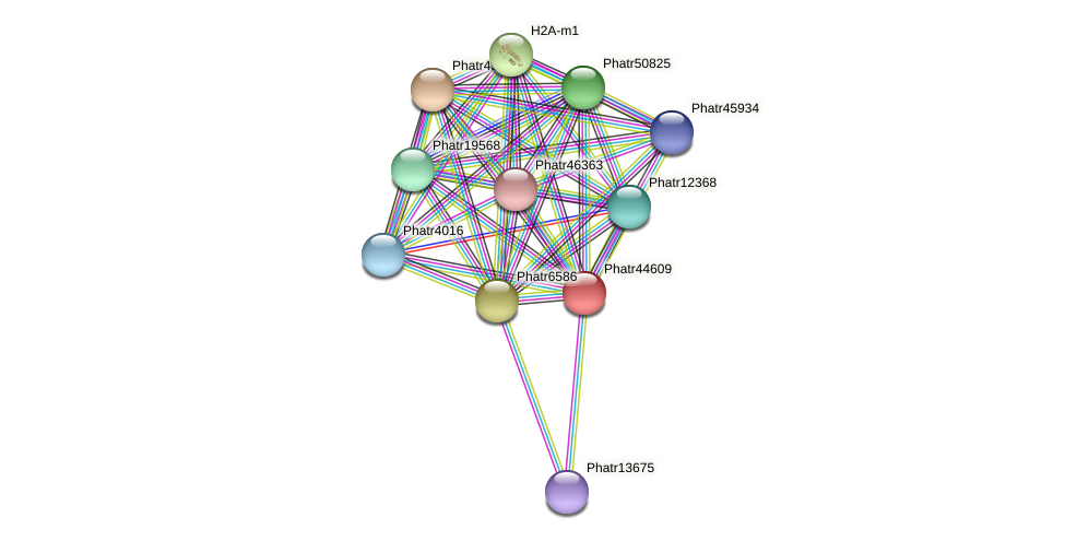 Phatr44609 protein (Phaeodactylum tricornutum) - STRING interaction network