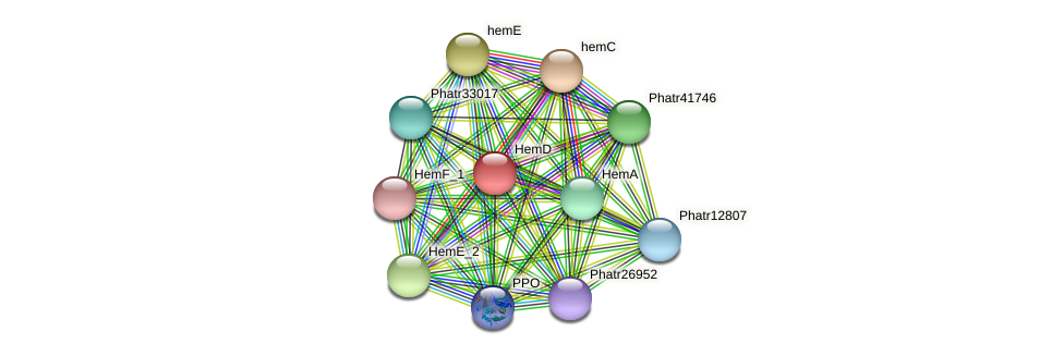 HemD protein (Phaeodactylum tricornutum) - STRING interaction network